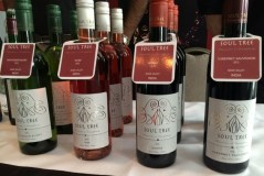Out In Brum - Wine Fest 2014 - Indian Wine