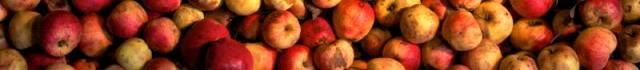 Hogans Bar Apples